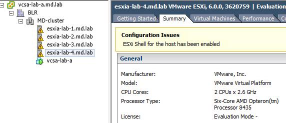 adding-cloned-nested-esxi-in-vcenter-datastore-conflict_6