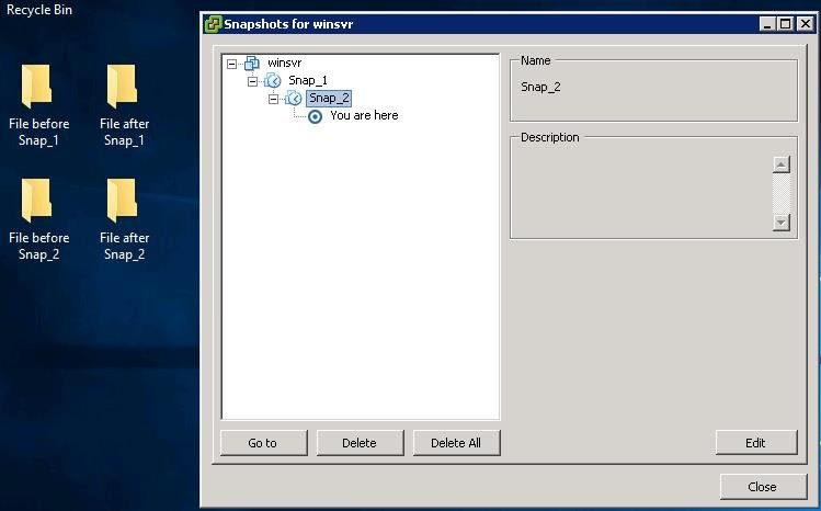 Delete All VMware Snapshots_2