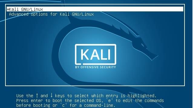 Download and Install Kali Linux on VMware
